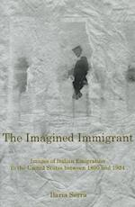 The Imagined Immigrant (Fairleigh Dickinson University Press Series in Italian Studies)
