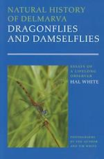 Natural History of Delmarva Dragonflies and Damselflies (Cultural Studies of Delaware and the Eastern Shore)