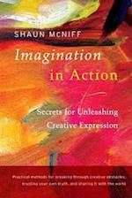 Imagination in Action af Shaun Mcniff