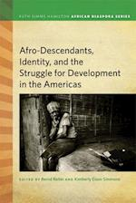 Afro-Descendants, Identity, and the Struggle for Development in the Americas (Ruth Simms Hamilton African Diaspora)