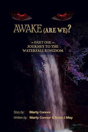 Awake (Are We?)
