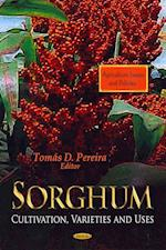 Sorghum (Agriculture Issues and Policies)
