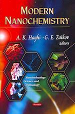 Modern Nanochemistry (Nanotechnology Science and Technology)