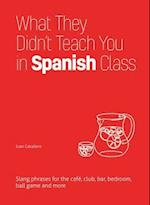 What They Didn't Teach You in Spanish Class (Dirty Everyday Slang)