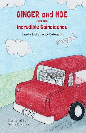 Bog, paperback Ginger and Moe and the Incredible Coincidence af Linda Defruscio-Robinson