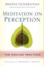 Meditation on Perception