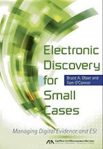 Electronic Discovery for Small Cases