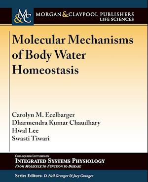 Bog, paperback Molecular Mechanisms of Body Water Homeostasis af Carolyn M. Ecelbarger, Dharmendra Kumar Chaudhary, Hwal Lee