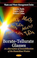 Borate-Tellurate Glasses