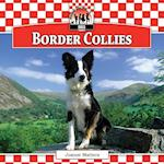 Border Collies (Dogs)