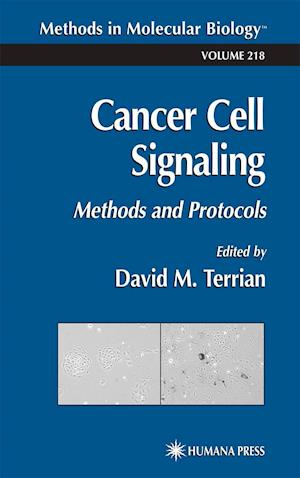 Cancer Cell Signaling : Methods and Protocols