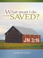 What Must I Do to be Saved? af Marcus Grodi