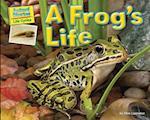 A Frog's Life af Ellen Lawrence