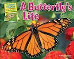 A Butterfly's Life af Ellen Lawrence