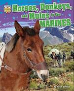 Horses, Donkeys, and Mules in the Marines af Meish Goldish