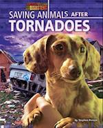 Saving Animals After Tornadoes (Rescuing Animals from Disasters)