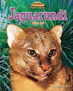 Jaguarundi af Joyce Markovics