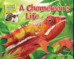 A Chameleon's Life (Science Slam: Animal Diaries-Life Cycles)