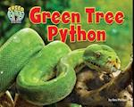 Green Tree Python (Treed Animal Life in the Trees)