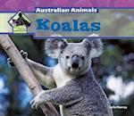 Koalas af Julie Murray
