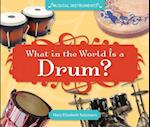 What in the World Is a Drum? (Musical Instruments)