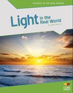 Light in the Real World af Robin Koontz