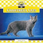 Chartreux Cats (Cats Set 7)
