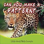 Can You Make a Pattern? (Little World Math Concepts)