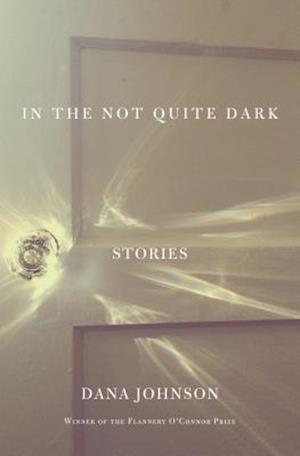 In the Not Quite Dark af Dana Johnson