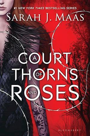 Bog, paperback A Court of Thorns and Roses af Sarah J. Maas