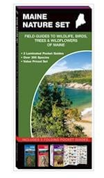 Maine Nature Set (A pocket naturalist guide)