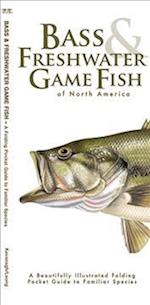 Bass & Freshwater Game Fish Of North America (Pocket Naturalist guide)