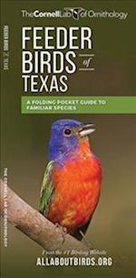 Feeder Birds of Texas (Cornell All about Birds)