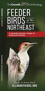 Feeder Birds of the Northeast (Cornell All about Birds)
