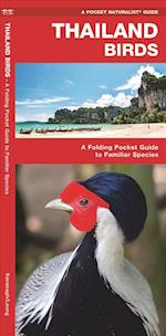 Thailand Birds (A pocket naturalist guide)