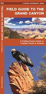 Field Guide to the Grand Canyon (Pocket Naturalist guide)