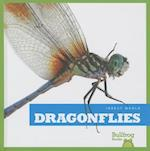Dragonflies (Insect World)