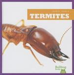 Termites (Insect World)
