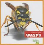 Wasps (Insect World)