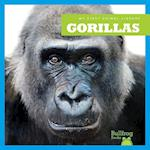 Gorillas (My First Animal Library)