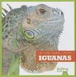 Iguanas (My First Animal Library)