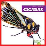 Cicadas (Insect World)