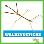 Walkingsticks (Insect World)
