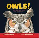 Owls! (Strange and Wonderful)