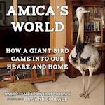 Amica's World