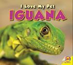 Iguana (I Love My Pet Library)