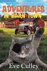 Adventures in Barn Town (Adventures in Barn Town, nr. 1)