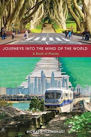 Bog, paperback Journeys into the Mind of the World af Richard Tillinghast