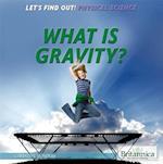 What Is Gravity? af Christine Honders