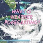 Let's Find Out! Weather Set af Bobi Martin